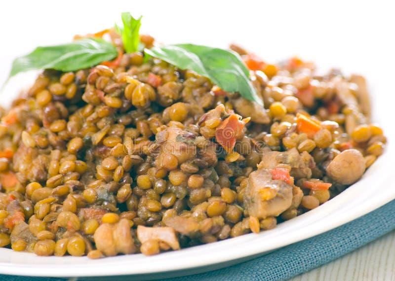 Φακές με το κρέας, τα μανιτάρια και τα λαχανικά στοκ εικόνα