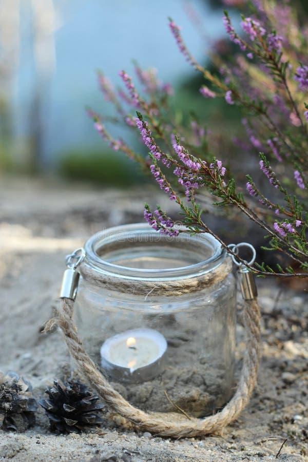 Φανάρι και ερείκη φθινοπώρου στοκ φωτογραφία με δικαίωμα ελεύθερης χρήσης