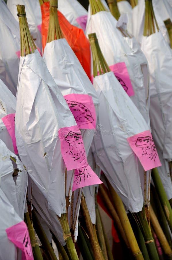 Φανάρι φρύνων στο φεστιβάλ φρύνων στοκ φωτογραφίες με δικαίωμα ελεύθερης χρήσης