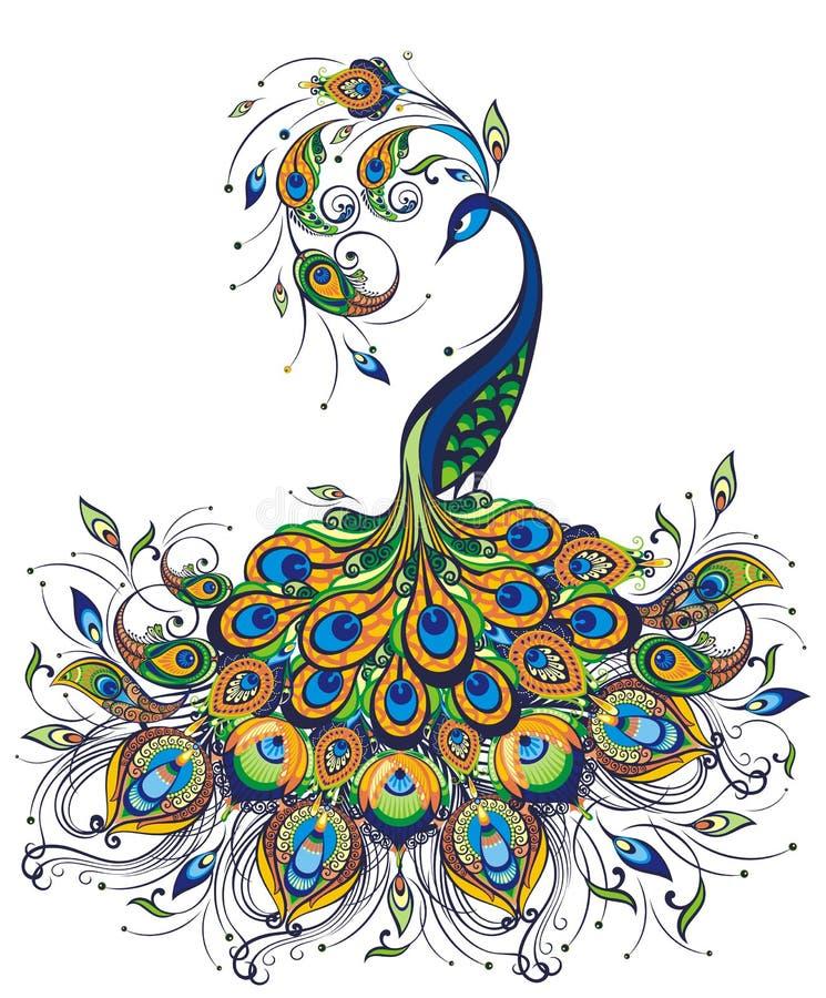 Φαντασία peacock που επισύρει την προσοχή στο άσπρο υπόβαθρο διανυσματική απεικόνιση