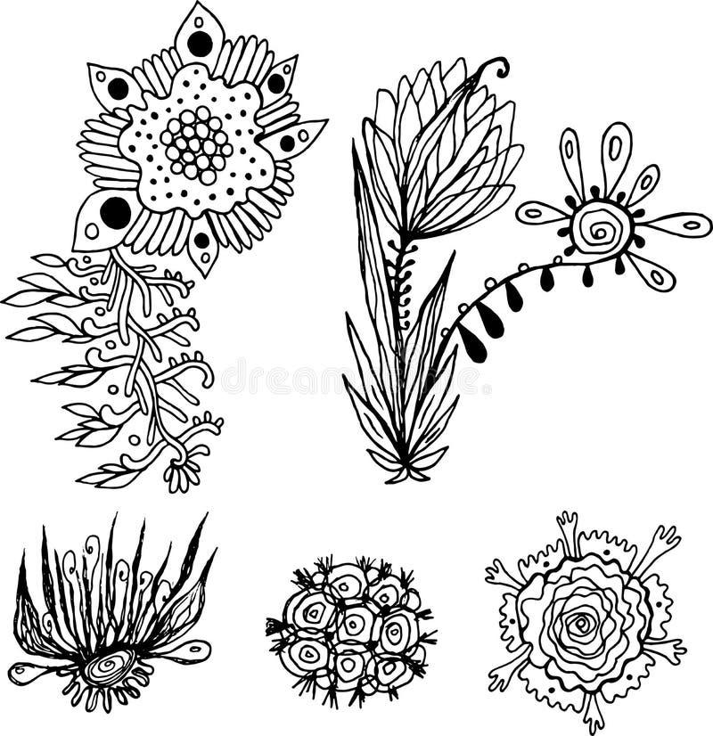 Φανταστικά floral στοιχεία καθορισμένα Το μελάνι ανθίζει τη συλλογή Βοτανική τέχνη σχεδίων περιλήψεων r διανυσματική απεικόνιση