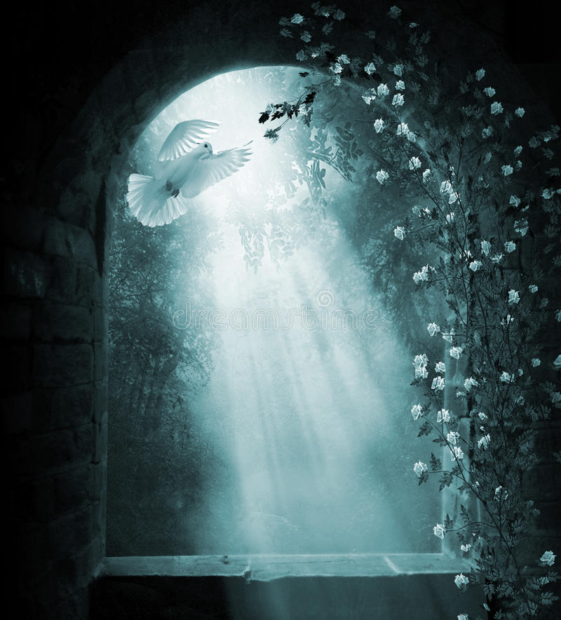 φανταστική νυκτερινή σκηνή στοκ φωτογραφία με δικαίωμα ελεύθερης χρήσης