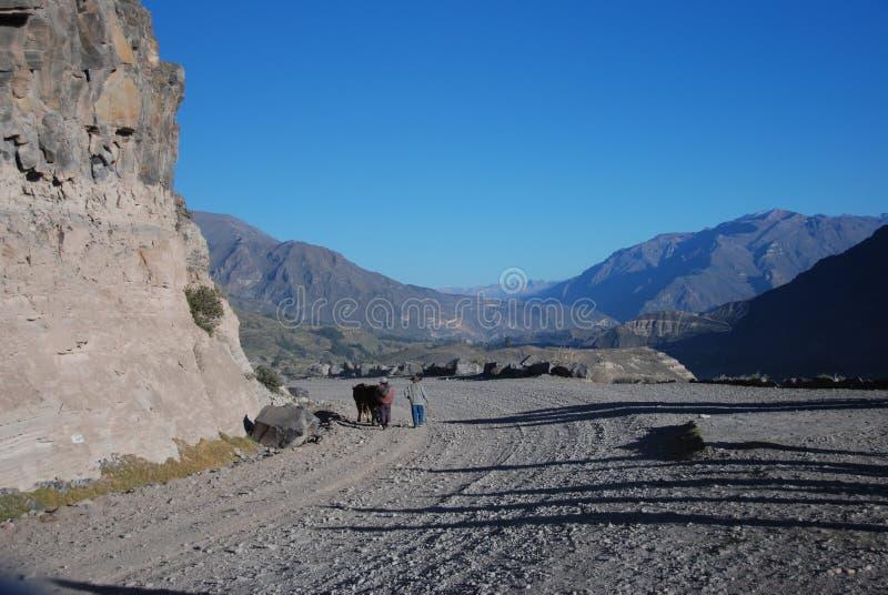 φαράγγι ξηρός περουβιανό&sigmaf στοκ εικόνα με δικαίωμα ελεύθερης χρήσης