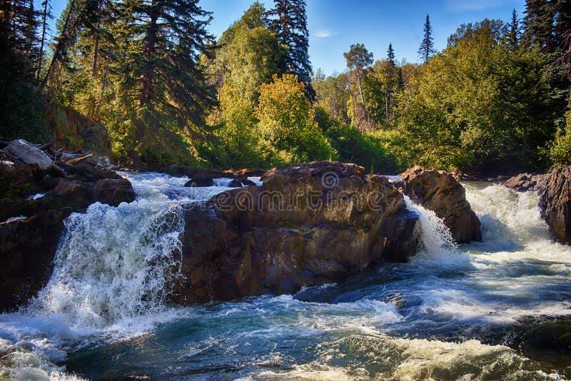 Φαράγγι ποταμών των βακκίνιων - καλοκαίρι στοκ εικόνες με δικαίωμα ελεύθερης χρήσης