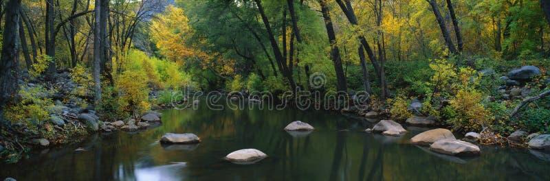 Φαράγγι Cottonwood, Sedona, AZ στοκ εικόνα με δικαίωμα ελεύθερης χρήσης
