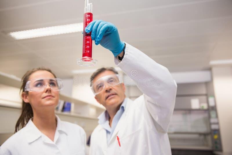 Φαρμακοποιοί που εξετάζουν την κούπα του κόκκινου υγρού στοκ εικόνες