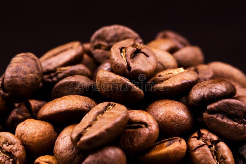 φασόλια καφέ στοκ φωτογραφία
