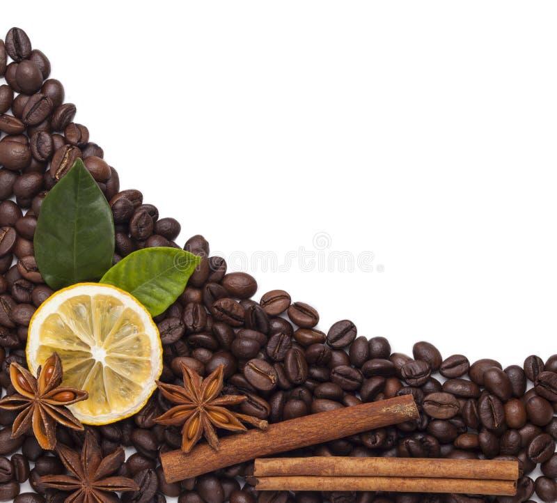 Φασόλια καφέ με την κανέλα και το γλυκάνισο στοκ εικόνα