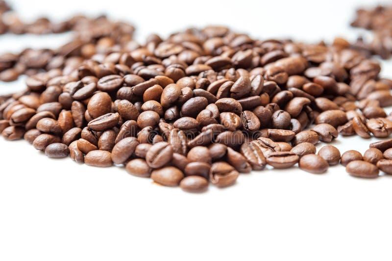 φασόλια καφέ που απομονώνονται πέρα από το άσπρο υπόβαθρο στοκ εικόνες
