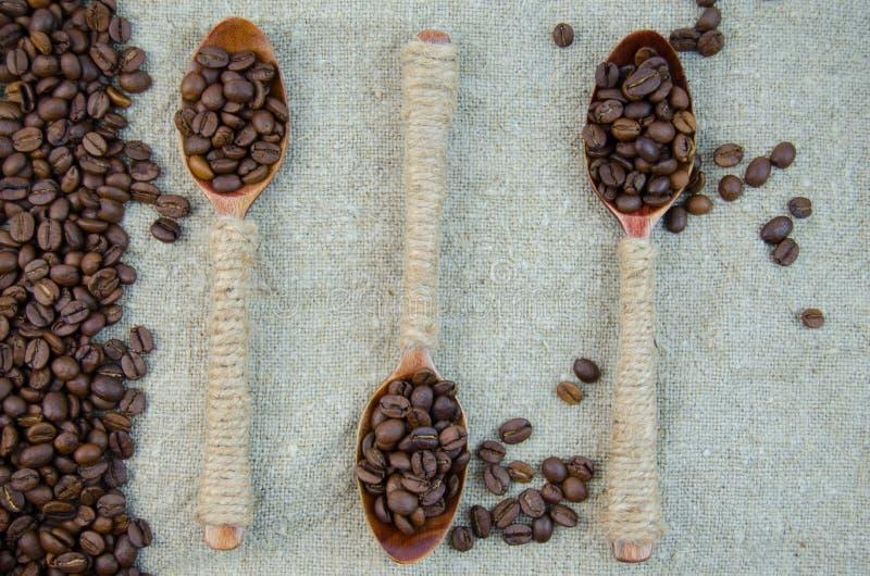 Φασόλια καφέ σε ένα κουτάλι στοκ φωτογραφίες με δικαίωμα ελεύθερης χρήσης