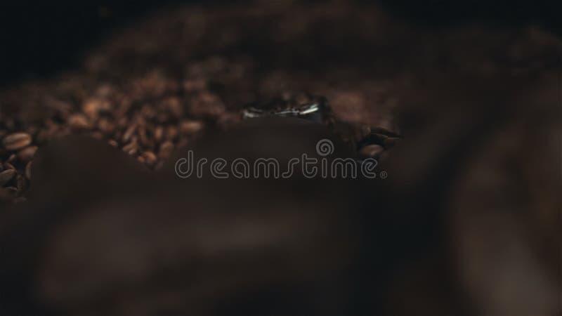 Φασόλια καφέ στο μύλο απόθεμα βίντεο
