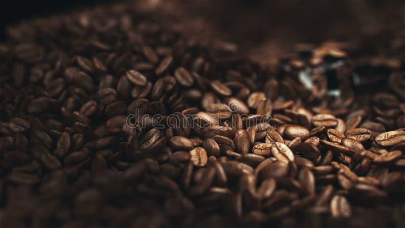 Φασόλια καφέ στο μύλο φιλμ μικρού μήκους