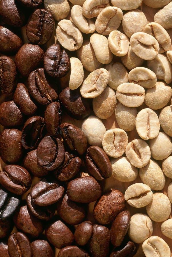Φασόλια καφέ φρέσκα και που ψήνονται στοκ εικόνες