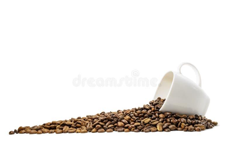 Φασόλια Coffe με το φλυτζάνι στοκ φωτογραφίες