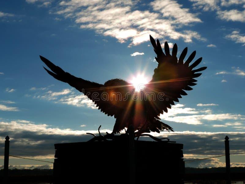 Φαλακρό άγαλμα αετών στοκ εικόνα