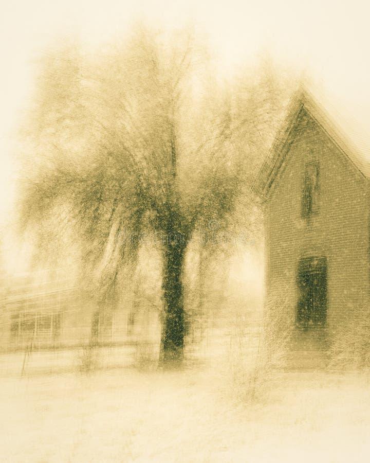14 ΦΕΒΡΟΥΑΡΊΟΥ 2019 - ΚΟΛΟΡΑΝΤΟ, ΗΠΑ - συχνασμένο εγκαταλειμμένο σπίτι στην παλαιά δύση - Κολοράντο στοκ φωτογραφία με δικαίωμα ελεύθερης χρήσης
