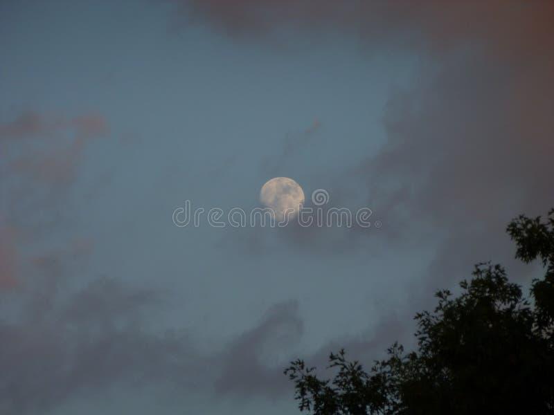 Φεγγάρι βροντής στοκ εικόνες
