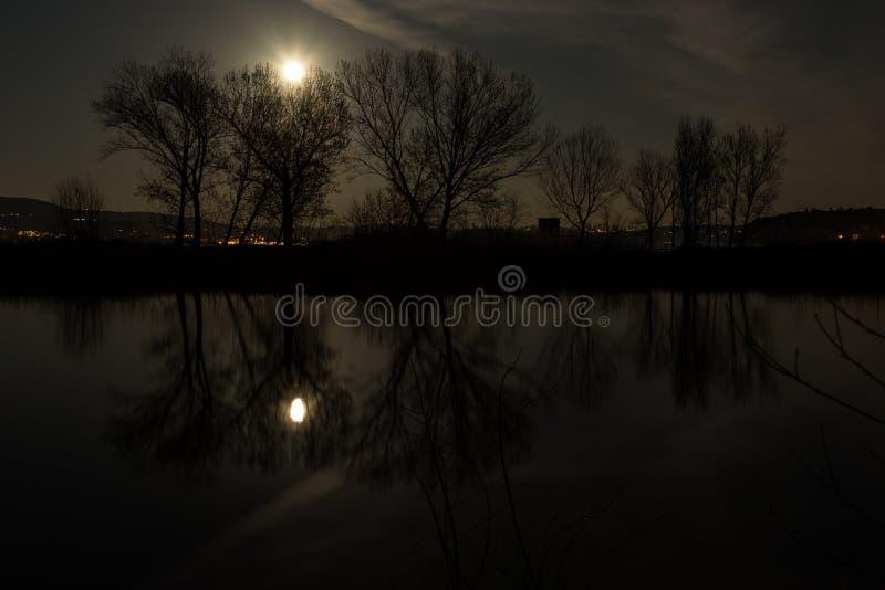 Φεγγάρι και δέντρα που στην επιφάνεια λιμνών Trasimeno τη νύχτα στοκ εικόνες