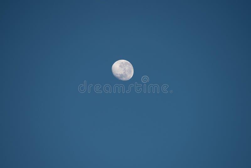 Φεγγάρι με τους κρατήρες στο μπλε ουρανό στοκ φωτογραφία