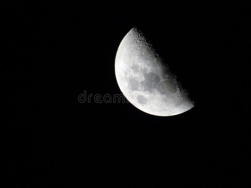 Φεγγάρι της Luna στοκ εικόνες