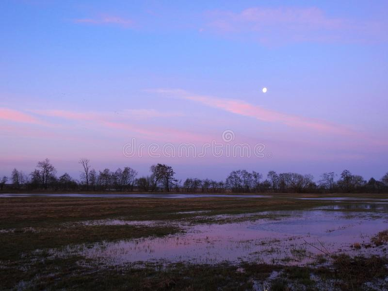Φεγγάρι, τομέας και ζωηρόχρωμος ουρανός το πρωί, Λιθουανία στοκ εικόνα με δικαίωμα ελεύθερης χρήσης