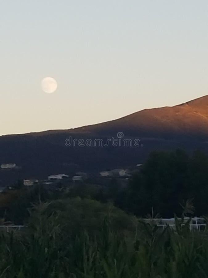 Φεγγάρι το βράδυ στοκ εικόνες