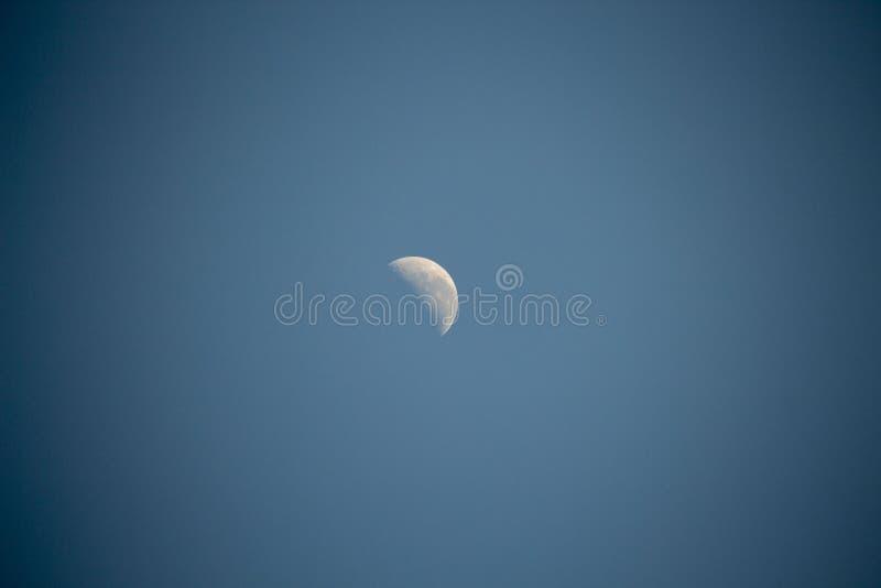 Φεγγάρι των πρώτων τριμήνων στον αυστραλιανό ουρανό ξημερωμάτων στα τέλη του φθινοπώρου στοκ εικόνες