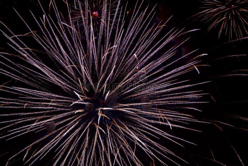 Φεστιβάλ 2018 πυροτεχνημάτων φθινοπώρου Chofu στοκ φωτογραφίες με δικαίωμα ελεύθερης χρήσης
