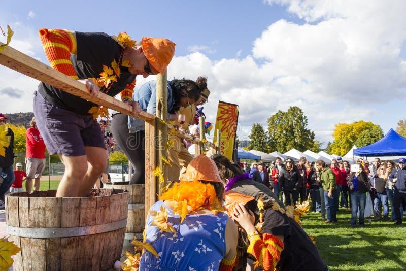 Φεστιβάλ της κοιλάδας του Oliver Okanagan σταφυλιών στοκ φωτογραφία με δικαίωμα ελεύθερης χρήσης