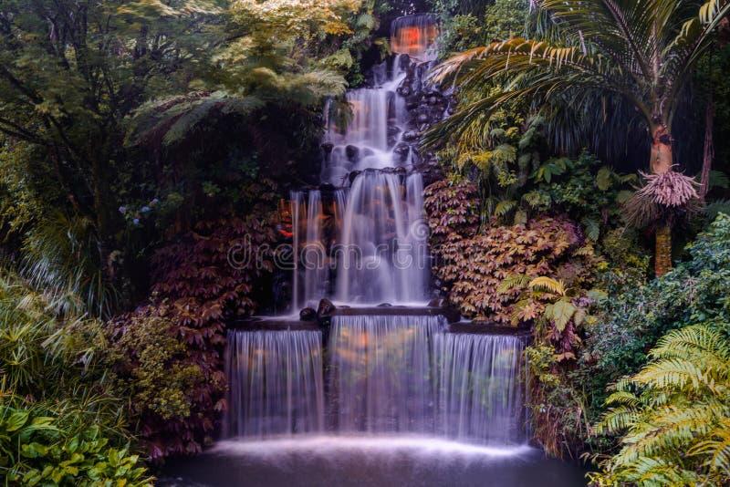 Φεστιβάλ των φω'των, πάρκο Pukekura, νέο Πλύμουθ, Νέα Ζηλανδία στοκ εικόνες