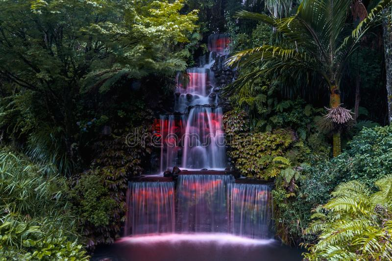 Φεστιβάλ των φω'των, πάρκο Pukekura, νέο Πλύμουθ, Νέα Ζηλανδία στοκ εικόνα με δικαίωμα ελεύθερης χρήσης