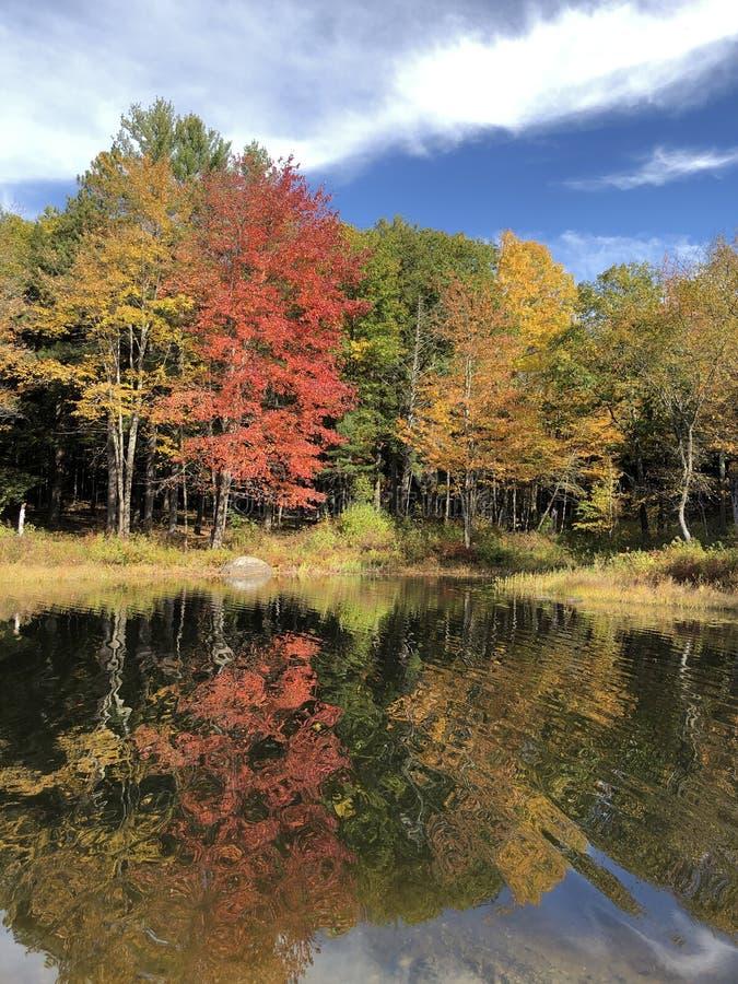 Φθινοπωρινές αντανακλάσεις στοκ εικόνα