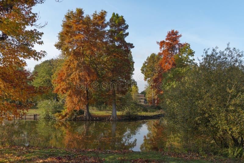 Φθινοπωρινές αποχρώσεις στοκ φωτογραφία με δικαίωμα ελεύθερης χρήσης