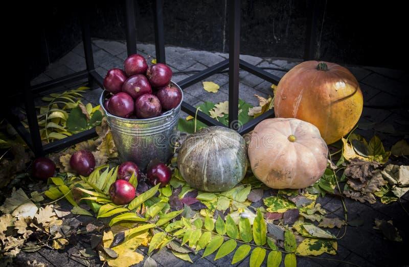 Φθινοπωρινή Συγκομιδή Μήλα και φύλλα στοκ φωτογραφία με δικαίωμα ελεύθερης χρήσης