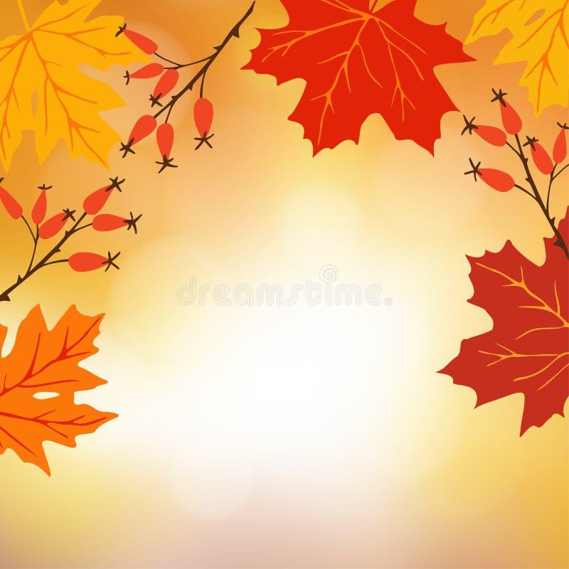 Φθινόπωρο, ανασκόπηση πτώσης Ευχετήρια κάρτα με συρμένα τα χέρι φύλλα σφενδάμου και ροδαλά τα ισχία Σύγχρονη θολωμένη απεικόνιση απεικόνιση αποθεμάτων