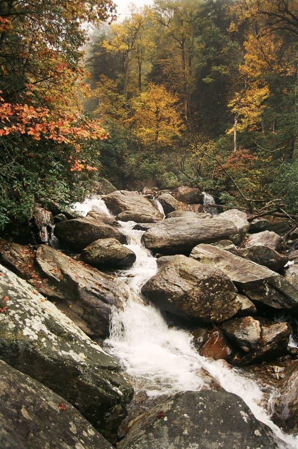 Φθινόπωρο κατά μήκος του ποταμού Whitewater στοκ εικόνα