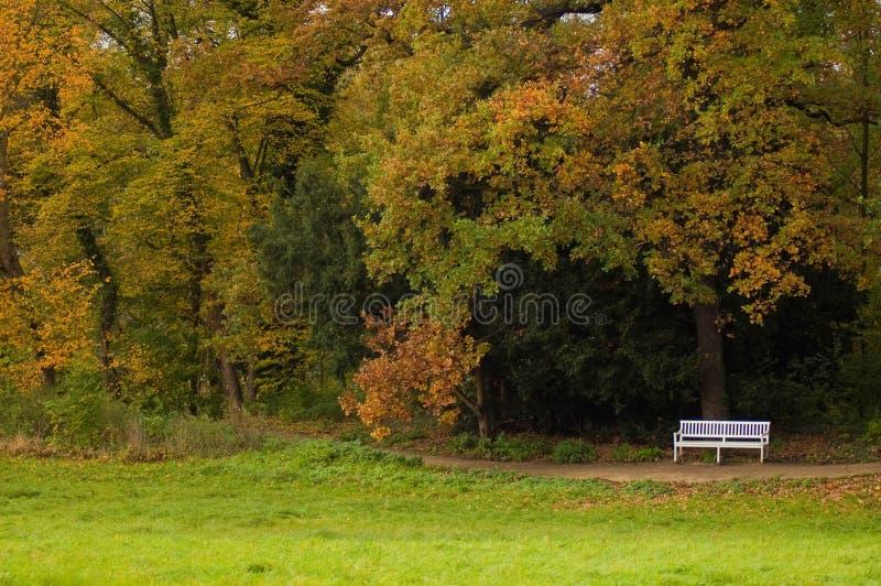 Φθινόπωρο σε ένα πάρκο στοκ φωτογραφία με δικαίωμα ελεύθερης χρήσης