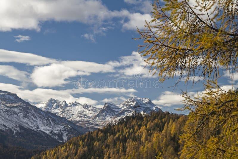 Φθινόπωρο σε Engadine στοκ φωτογραφία με δικαίωμα ελεύθερης χρήσης