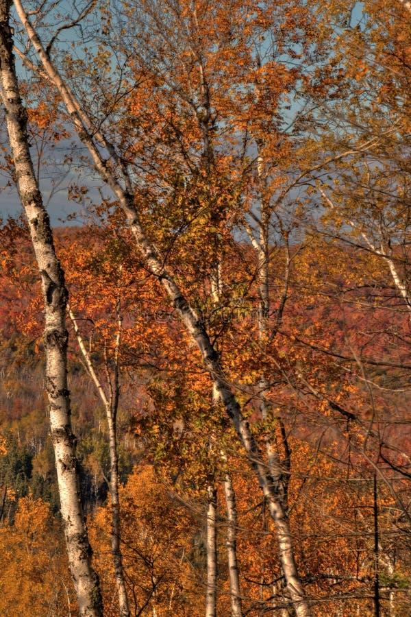 Φθινόπωρο στην αιχμή του Carlton των πριονωτών βουνών σε βόρεια Μινεσότα στη βόρεια ακτή του ανωτέρου λιμνών στοκ εικόνες