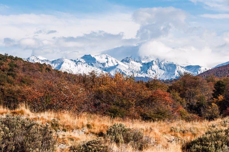 Φθινόπωρο στην Παταγωνία Γη του Πυρός, αργεντινή πλευρά στοκ φωτογραφία