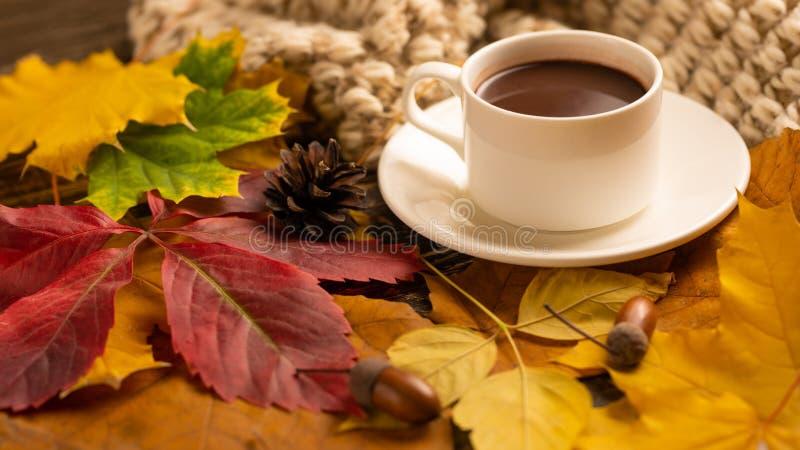 Φθινόπωρο, φύλλα πτώσης, ένα καυτό φλιτζάνι του καφέ και ένα θερμό μαντίλι στο υπόβαθρο ενός ξύλινου πίνακα Εποχιακός, καφές πρωι στοκ φωτογραφίες