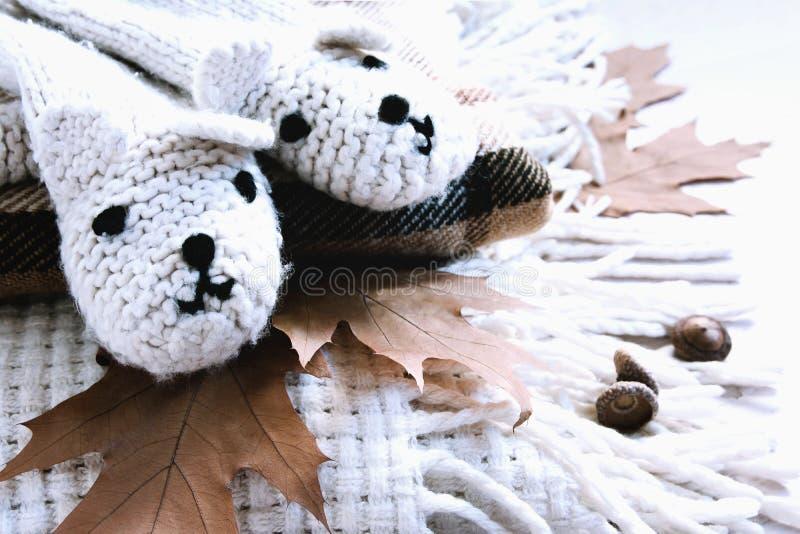 Φθινόπωρο Goodbay - γεια χειμώνας Γάντια με τις αρκούδες στα φύλλα θερμών καλυμμάτων και φθινοπώρου στοκ εικόνα