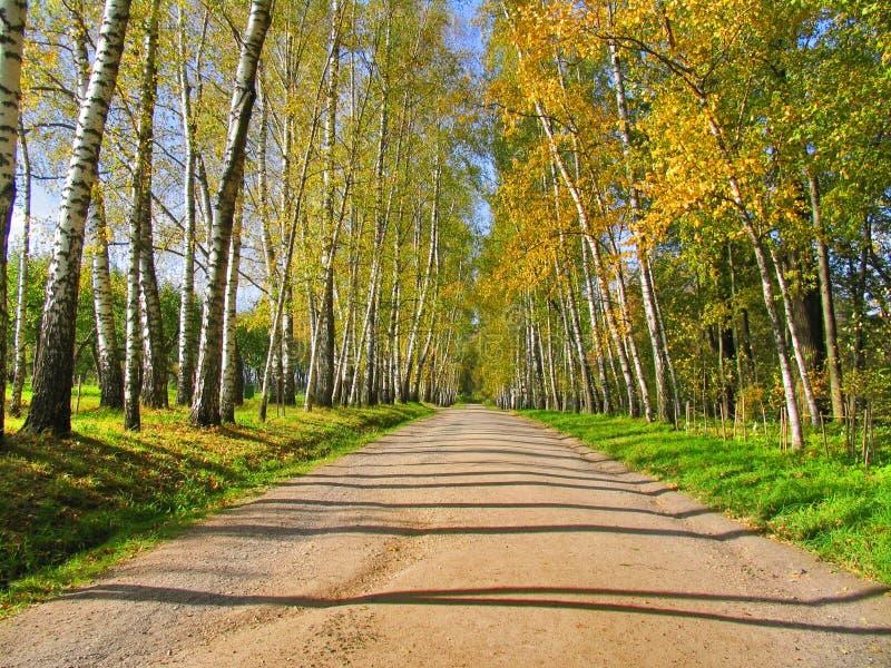 Φθινόπωρο Preshpect, Yasnaya Polyana, Τούλα, Ρωσία στοκ φωτογραφία με δικαίωμα ελεύθερης χρήσης