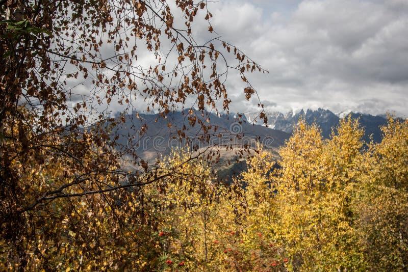 Φθινόπωρο Svanetia στοκ εικόνες