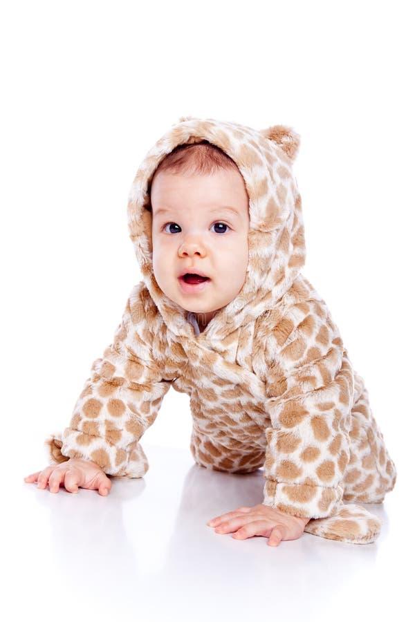φθορά τιγρών κοστουμιών μω στοκ φωτογραφία με δικαίωμα ελεύθερης χρήσης