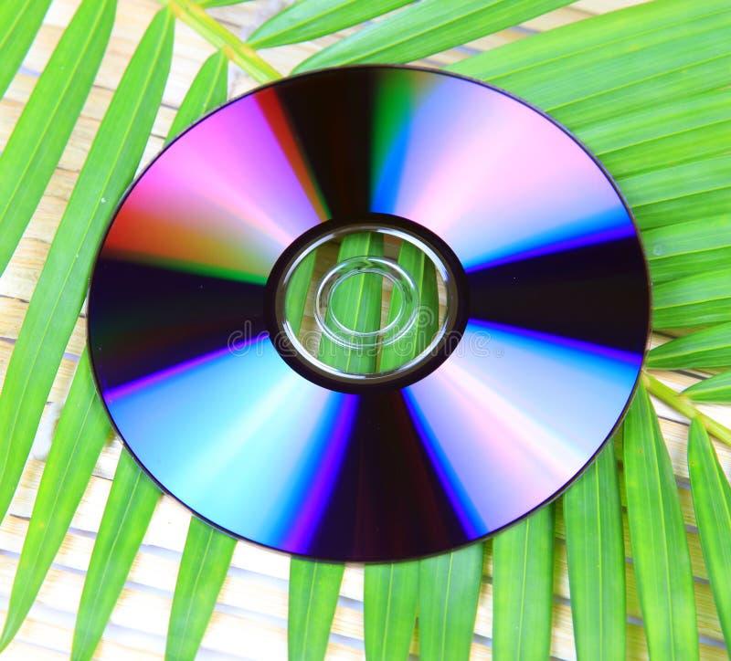 φιλική μουσική eco στοκ φωτογραφία με δικαίωμα ελεύθερης χρήσης