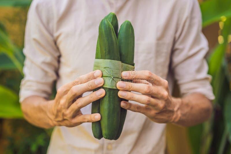 Φιλική προς το περιβάλλον έννοια συσκευασίας προϊόντων Αγγούρι που τυλίγεται σε ένα φύλλο μπανανών, ως εναλλακτική λύση σε μια πλ στοκ φωτογραφία με δικαίωμα ελεύθερης χρήσης