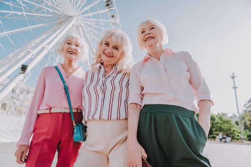 Φιλική συνεδρίαση των παλιών φίλων στο πάρκο στοκ φωτογραφία με δικαίωμα ελεύθερης χρήσης