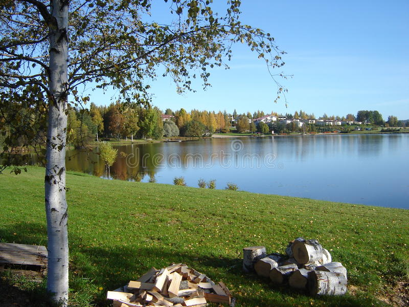 φινλανδικά δέντρα λιμνών στοκ φωτογραφία