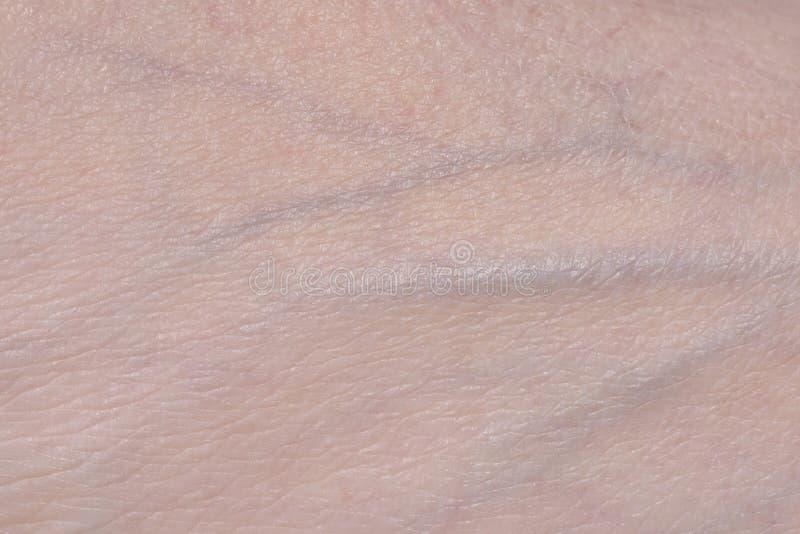 Φλέβες στο δέρμα στοκ εικόνα με δικαίωμα ελεύθερης χρήσης